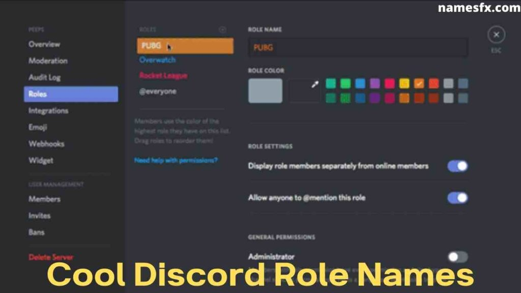 Cool Discord Role Names