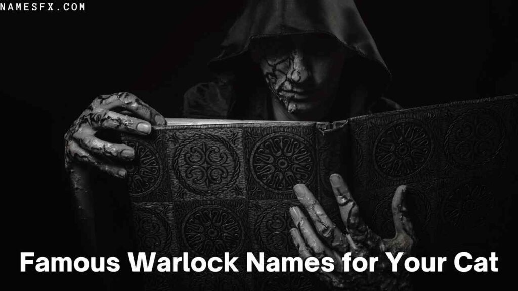 Famous Warlock Names From History for Your Cat
