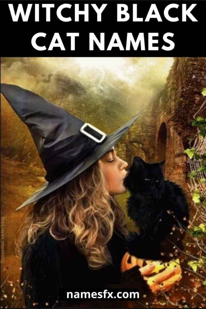 Witch Cat Names, Witchy Black Cat Names