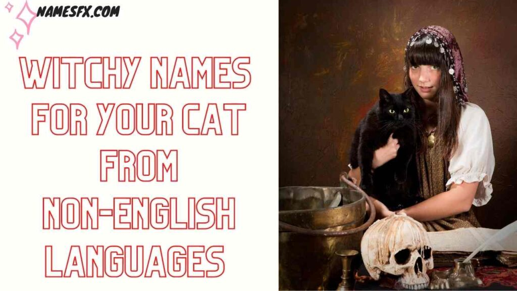 Witchy Names  FOr your Cat From non-English Languages